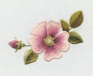 Последовательность выполнения лепестка цветка